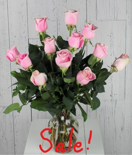 Picture of Dozen Light Pink Roses